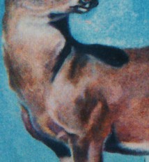artist oil painting details