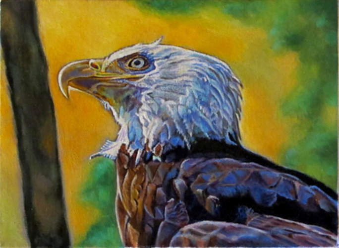 artist oil painting eagle ready to soar Karin Cohen