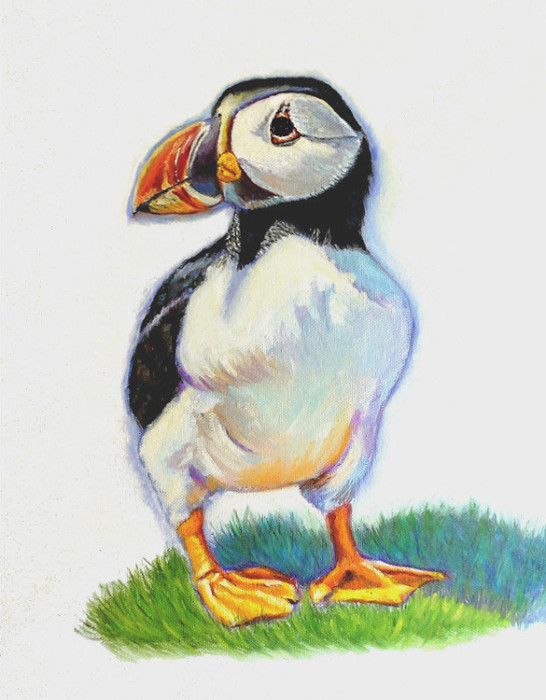artist oil painting Gary Jones Puffin