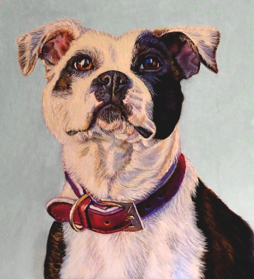 artist oil painting pit bull dog