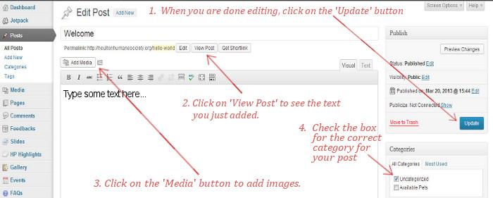 artist web design wordpress post help