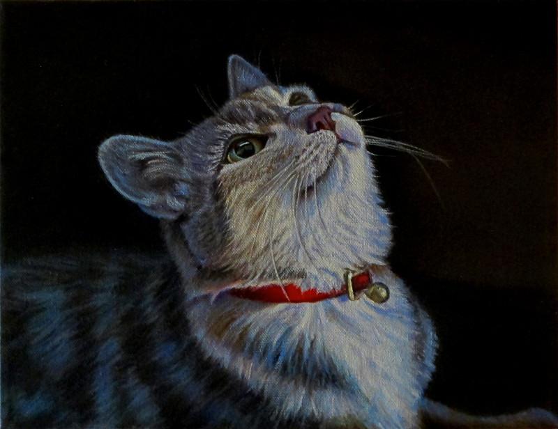 artist oil painting cat wait for it
