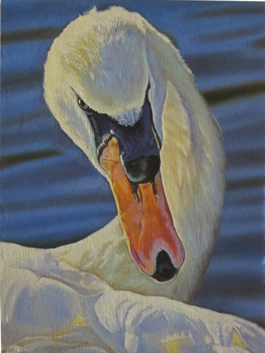 artist-oil-painting-swan-graceful-malevolence
