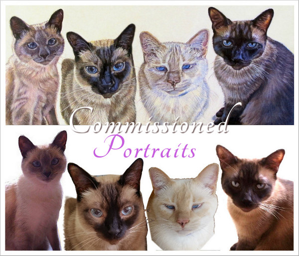 artist oil painting commission siamese cat family karin cohen