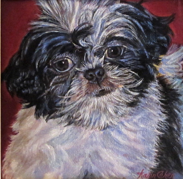 Oil painting commissioned Charlie Shih tzu