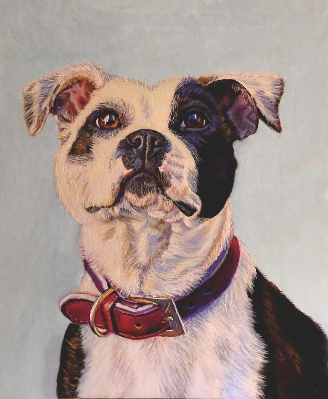 artist oil painting pit bull portrait