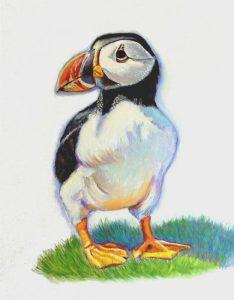 artist oil painting Gary Jones Puffin