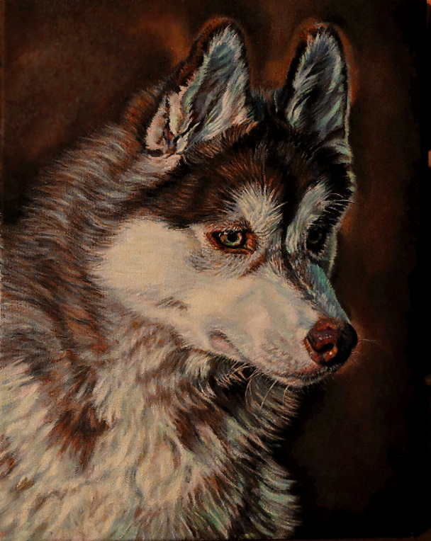 artist oil painting red siberian husky